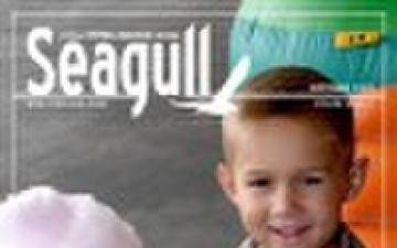 Seagull - 10.01.2009