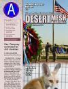 Desert Mesh - 07.07.2011